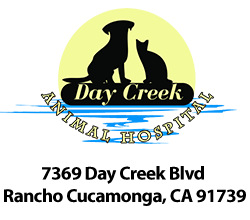 Day Creek Animal Hospital